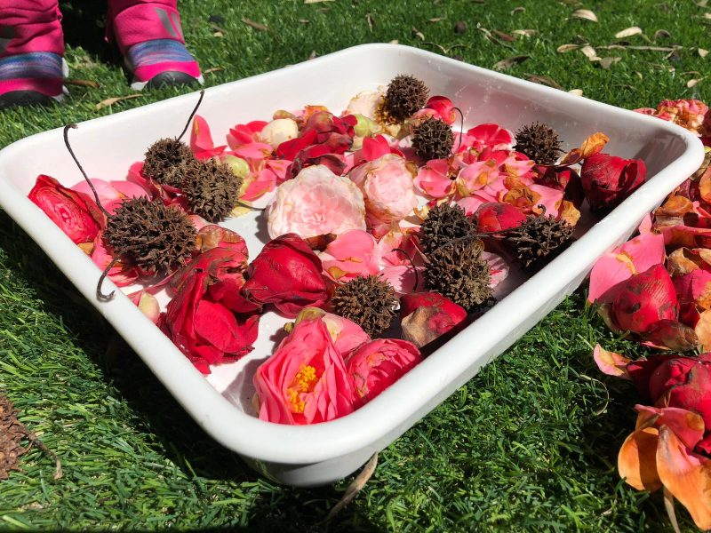 recoger flores niños