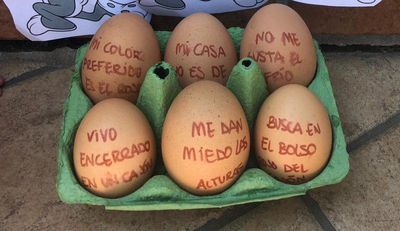 huevos pascua con pistas